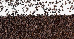 Fallen frisch gebratene dunkle Kaffeebohnen, die den Glasschirm füllen stock video