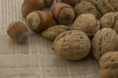 Hazelnuts and walnuts on a wooden base. Fallen fruits, hazelnut and nuts in a shell on a wooden base Royalty Free Stock Photography