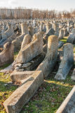 Fallen gravestones of ancient Jewish cemetery Stock Images