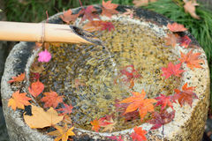 Fallen Japanese autumn maple leaves & flowing water from bamboo pipe Royalty Free Stock Photos