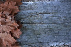 Fallen leafs in autumn. Space to write. Wooden table. Background Royalty Free Stock Photo