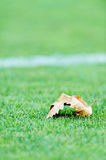 Fallen leave on a soccer field Royalty Free Stock Photos