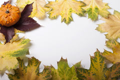 Fallen leaves of autumn backgrounds Stock Image
