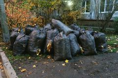 Fallen leaves, collected in black bags stock photography