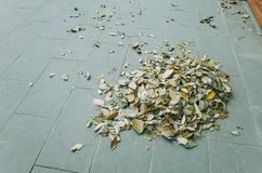 Fallen leaves are collected in pile. On flagstone, Chengdu, China stock images