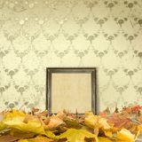 The fallen leaves on the floor Royalty Free Stock Photos