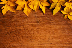Fallen leaves - grunge wood background Royalty Free Stock Image