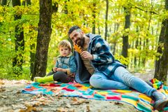Fallen leaves. Hipster bearded dad with cute son spend time together in forest. Family time. Family leisure. Brutal royalty free stock images