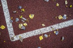 Fallen leaves lie on artificial turf sports field with markings. Fallen, yellow leaves lie on the artificial surface of the sports ground with markings Royalty Free Stock Images