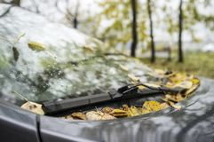 Fallen leaves lie on the windshield of the car and under the hoo. Yellow fallen leaves lie on the windshield of the car and under the hood Stock Photo