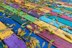 Fallen leaves on a multi-colored wooden boards Royalty Free Stock Photo