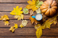 Fallen leaves, pumpkin and cup of coffee Royalty Free Stock Photo