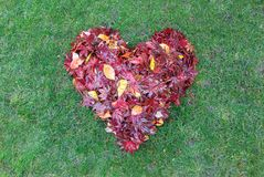 Fallen Leaves Raked into Heart Shape on Green Grass Stock Photo