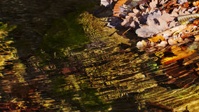 Fallen leaves in the river from the Stone golden autumn backgrou Royalty Free Stock Photography