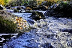 Fallen leaves on the rock. Small river streaming. Fallen leaver on the rock. Water streaming between rocks royalty free stock photos
