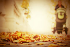 Fallen leaves on the sidewalk in autumn city park Royalty Free Stock Images