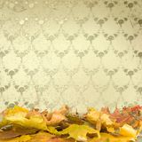 The fallen leaves with vintage wallpaper Stock Photo