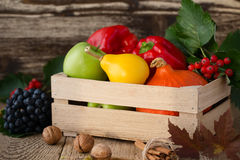 Fallen leaves, winter squash and vegetables in a wooden box. Fal Royalty Free Stock Images