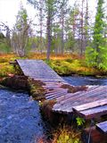 Fallen little bridge over stream in northern Finland. stock photo