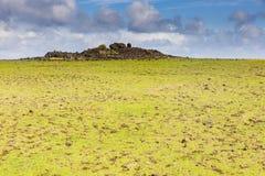 A fallen Moai statue in a field Stock Image