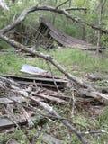 Fallen stock photography