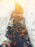 Fallen orange leaves covered with snow lying on the footway. Yellow leaf. Autumn leaf fall Stock Photo
