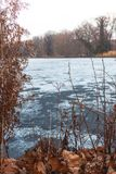 Fallen orange leaves and a frozen lake in the backgrou royalty free stock image
