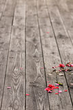 Fallen petals on a wooden plank background Stock Images