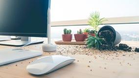 Fallen pot plant on desk. Stock Photo