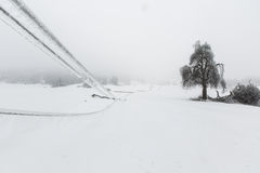Fallen pylons and trees covered with sleet and ice Royalty Free Stock Photo
