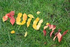 Fallen red and yellow leafs making word autumn Stock Photo