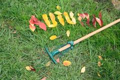 Fallen red and yellow leafs making word autumn Stock Photography