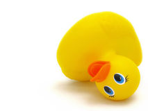 Fallen rubber duckie. Close up of fallen rubber duckie Stock Photography