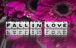 Fallen Sie in Liebesmitteilung mit rosa großen Blumen Lizenzfreie Stockfotografie