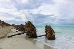 Fallen sunshades on the beach, Cuba, Varadero Stock Image