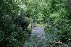 Fallen tree branch before the small pedestrian bridge between trees. `Planten un Blomen ` city garden in Hamburg stock images