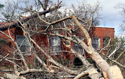 Fallen Tree on Brick House. A tree that fell on a house during tornado Stock Photo