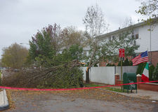 Fallen tree damaged house in the aftermath of Hurricane Sandy in Brooklyn, New York Royalty Free Stock Images