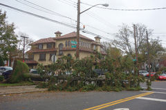 Fallen tree damaged house in the aftermath of Hurricane Sandy in Brooklyn, New York. BROOKLYN, NEW YORK - OCTOBER 30, 2012: Fallen tree damaged house in the Stock Photo