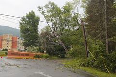 Fallen tree damaged power lines in the aftermath of  severe weather and tornado in Ulster County, New York Royalty Free Stock Image