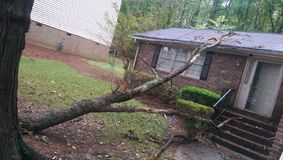 Fallen tree. House got hit Royalty Free Stock Photo
