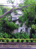 Fallen tree on house - hurricane damage Stock Photo