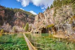 Fallen trees in Hanging Lake, Colorado, USA. Fallen trees in Hanging Lake, wide angle picture, Glenwood Canyon, Colorado, USA stock photos