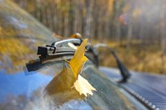 Fallen yellow leaf on a car window as a symbol of autumn, the concept of changing seasons. Fallen yellow leaf on a car window as a symbol of autumn stock photo