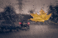Fallen yellow leaf and rain drops. On a car windshield with city road in the background. Toned effect Stock Image