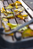 Fallen yellow leaves on a bench Stock Photography