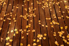 Fallen yellow leaves on the deck Stock Image