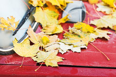 Fallen yellow maple leaves on red car hood Stock Photo