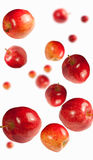 Fallende Äpfel Lizenzfreie Stockbilder