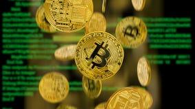 Fallende bitcoins auf dem Hintergrund des Computermonitors Stockfotografie